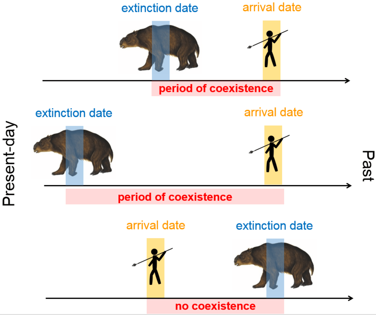 a case study of australia s megafauna Provided a continental breakdown of the late pleistocene megafauna extinctions and reported that humans were the main extinction driver in australia and north america, and climate was the main driver for europe, but that data were insufficient for making assessments for africa, asia and south america.