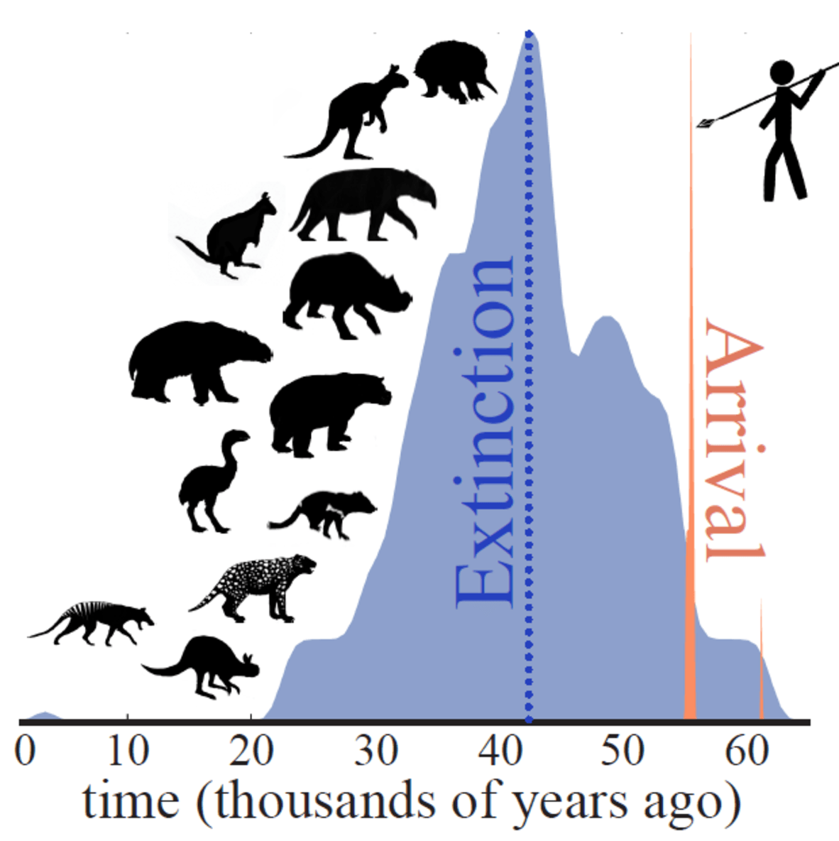 extinction of australian megafauna essay What is the oldest debate in australian science probably, the argument over  what caused extinction of our pleistocene megafauna – the.