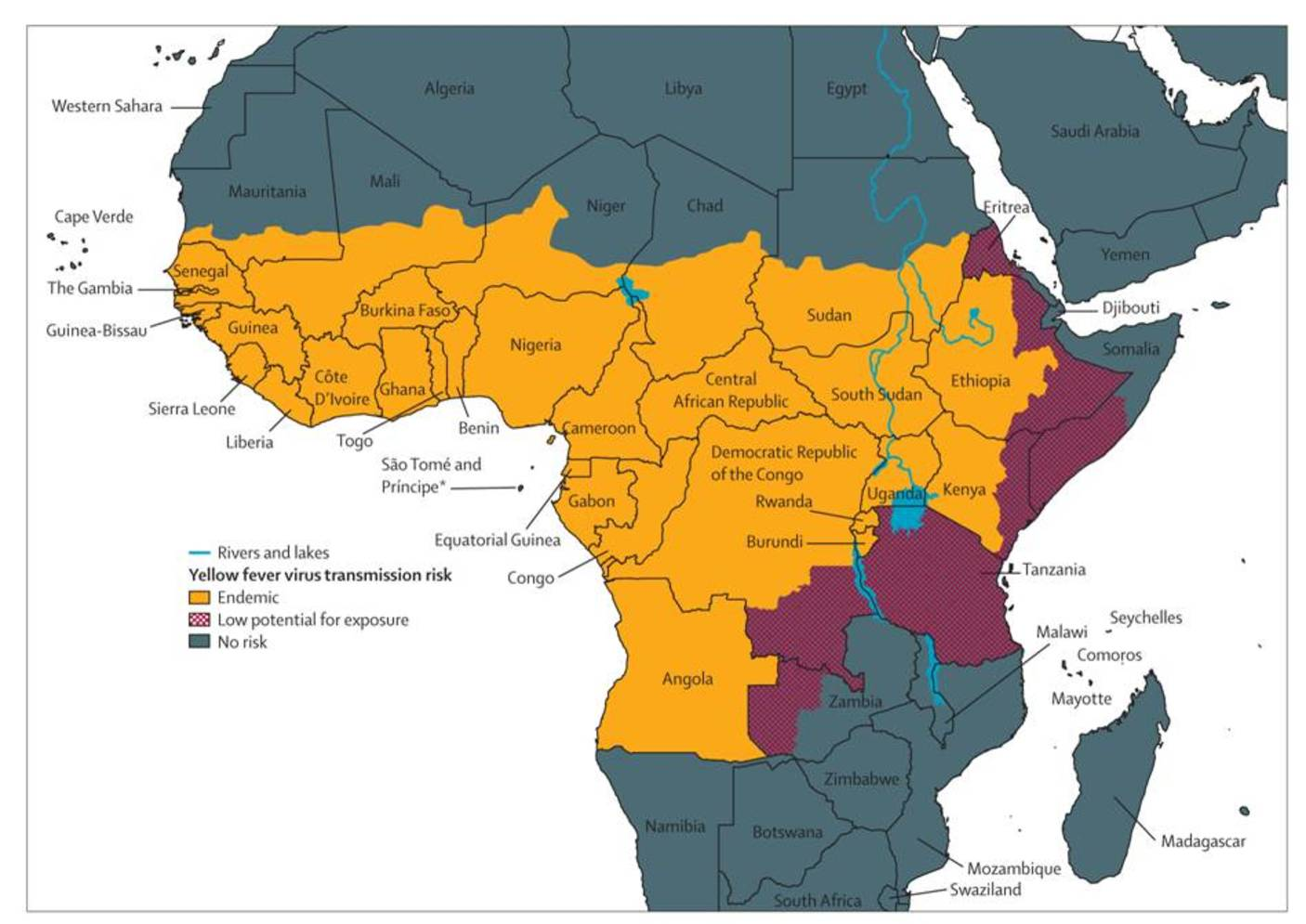 What Caused Angolas First Yellow Fever Outbreak In Three -9099