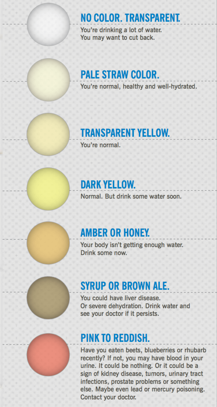 What Your Pee And Poo Colour Says About Your Health