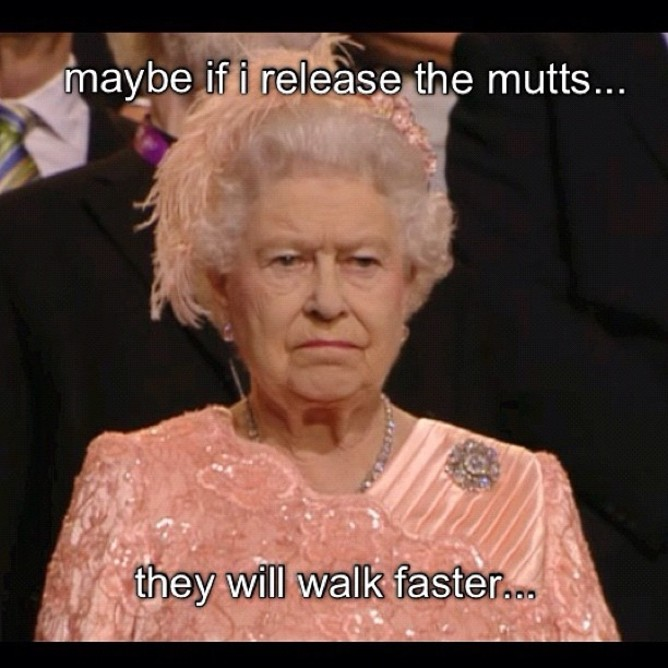 Boredom at the parade of athletes meets the Queen and The Hunger Games | Twitter