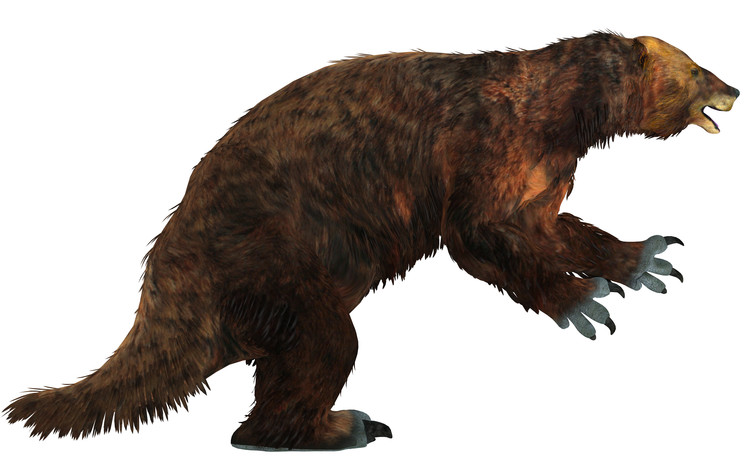 Giant ground sloths such as this elephant-sized Megatherium vanished soon after humans arrived in the New World.
