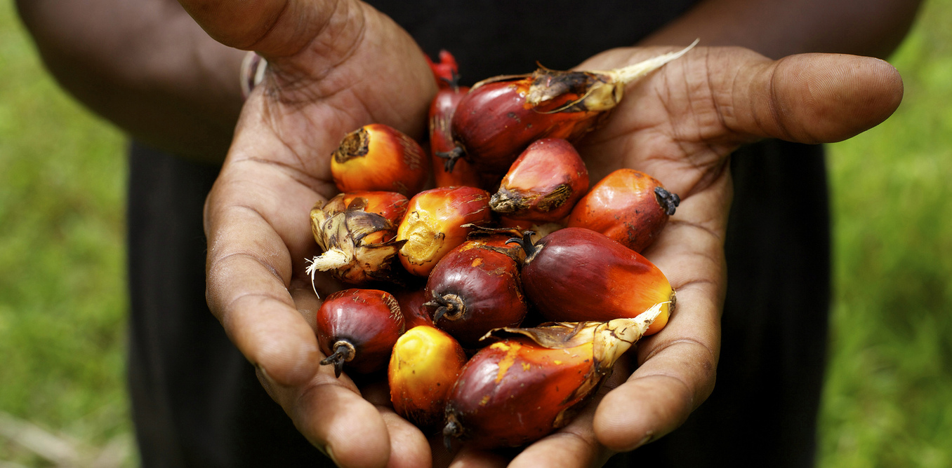 Two Ways To Value Sustainable Palm Oil