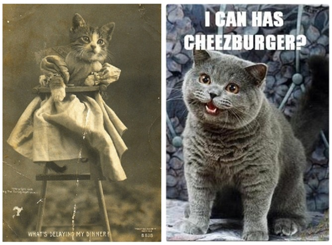 LOLcats pre-dated the Internet. The left image was taken by Harry Whittier Frees in 1905. The right is 'Happy Cat', the first LOLcat, from 2007 |  Wikipedia / Something Awful