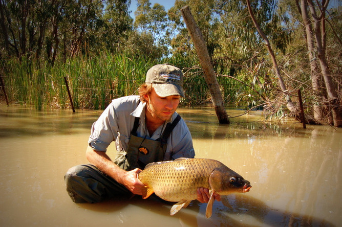 Tom Rayner with a large adult carp caught on the floodplain of the Macquarie Marshes, NSW. Photo: Tom Rayner