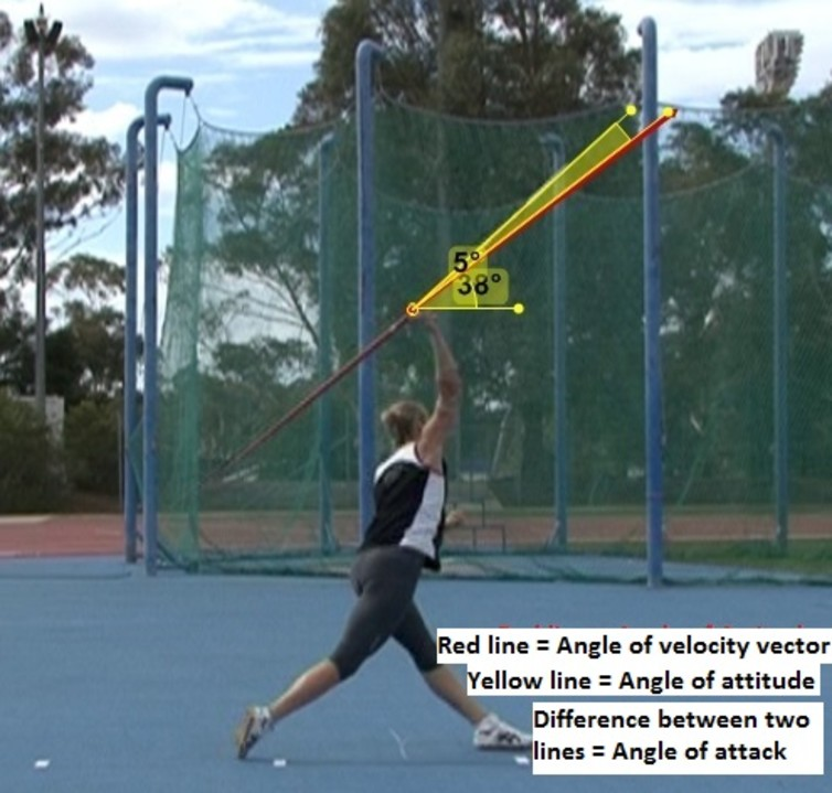 biomechanics of throwing of a javelin essay Biomechanics of overhand throwing with implications for injuries to javelin throwing during biomechanics of the shoulder during throwing in.