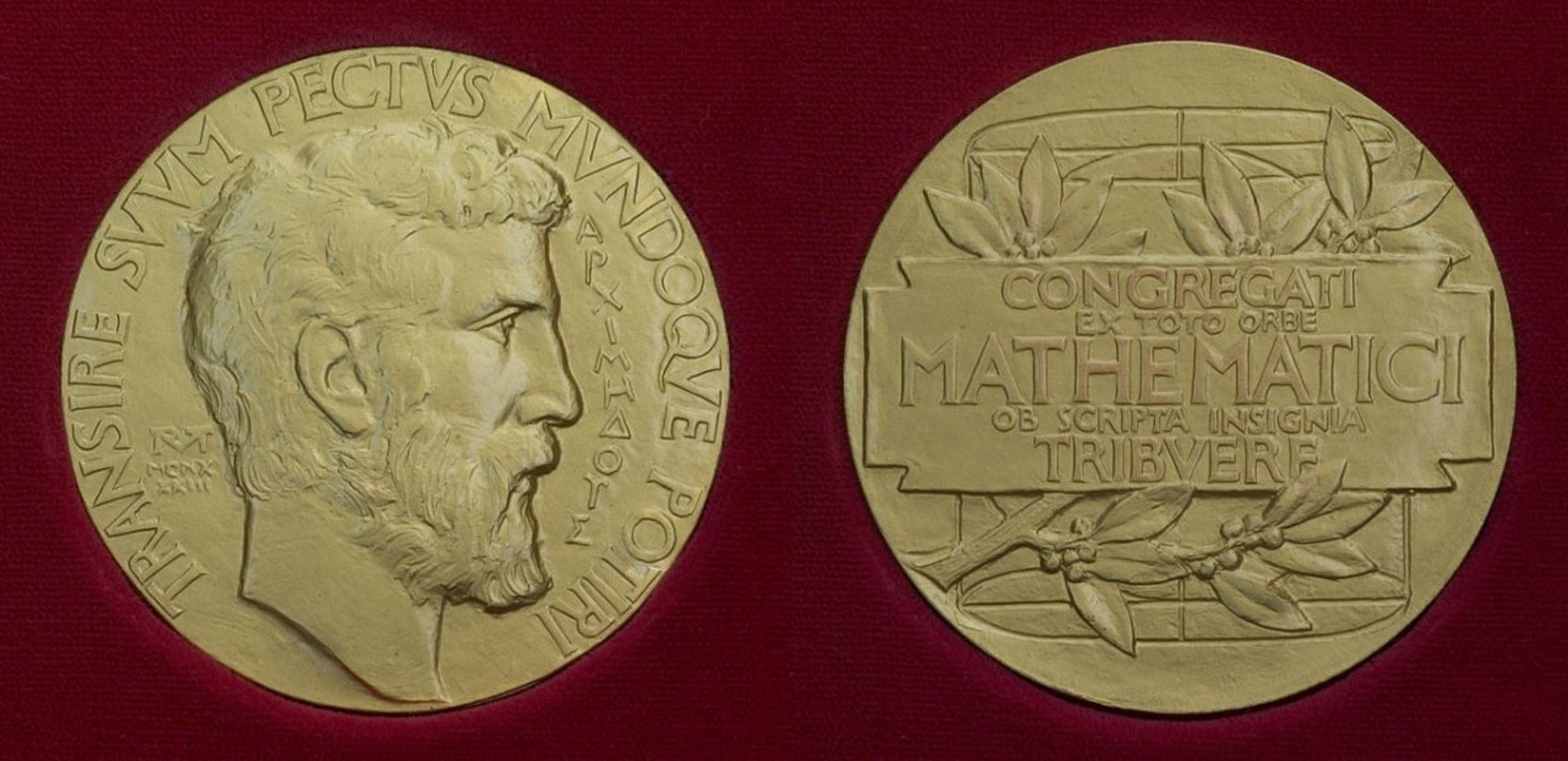 Image result for fields medal