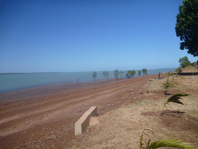 Tiwi Island Tours By Ferry