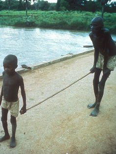 river blindness essays
