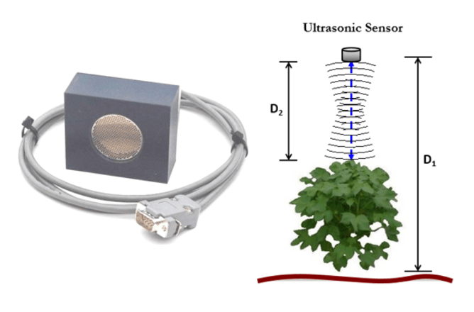 Picture of ultrasonic sensor, and its position above plant