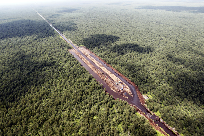 A dam in Indonesia splits the forest in two. Bagus Indohono / EPA