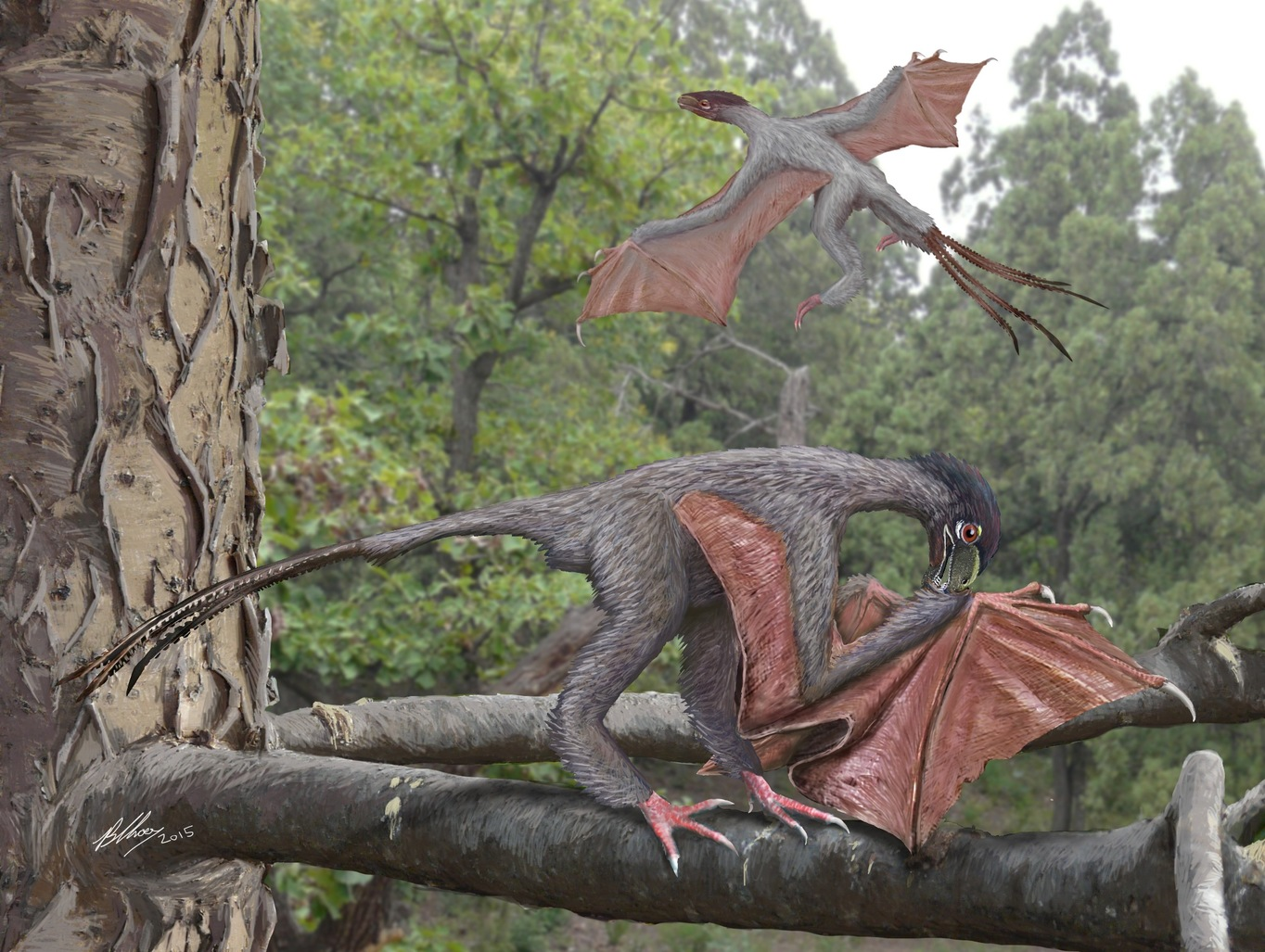 a bizarre new flying dinosaur with batlike wings and
